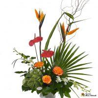 Corbeille exotique avec oiseaux du paradis, orchidée et anthurium