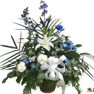 Corbeille classique blanc et bleu