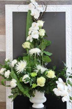 Corbeille d'orchidée blanc