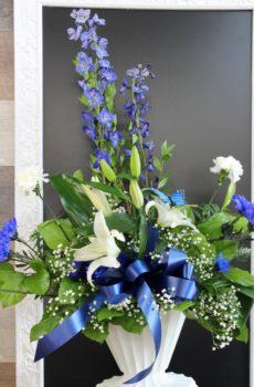 Corbeille de delphinium bleu