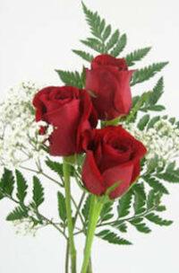 Bouquet du jour @ 20$