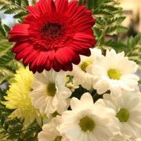 Bouquet du jour @ 15$