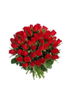 48 roses rouges