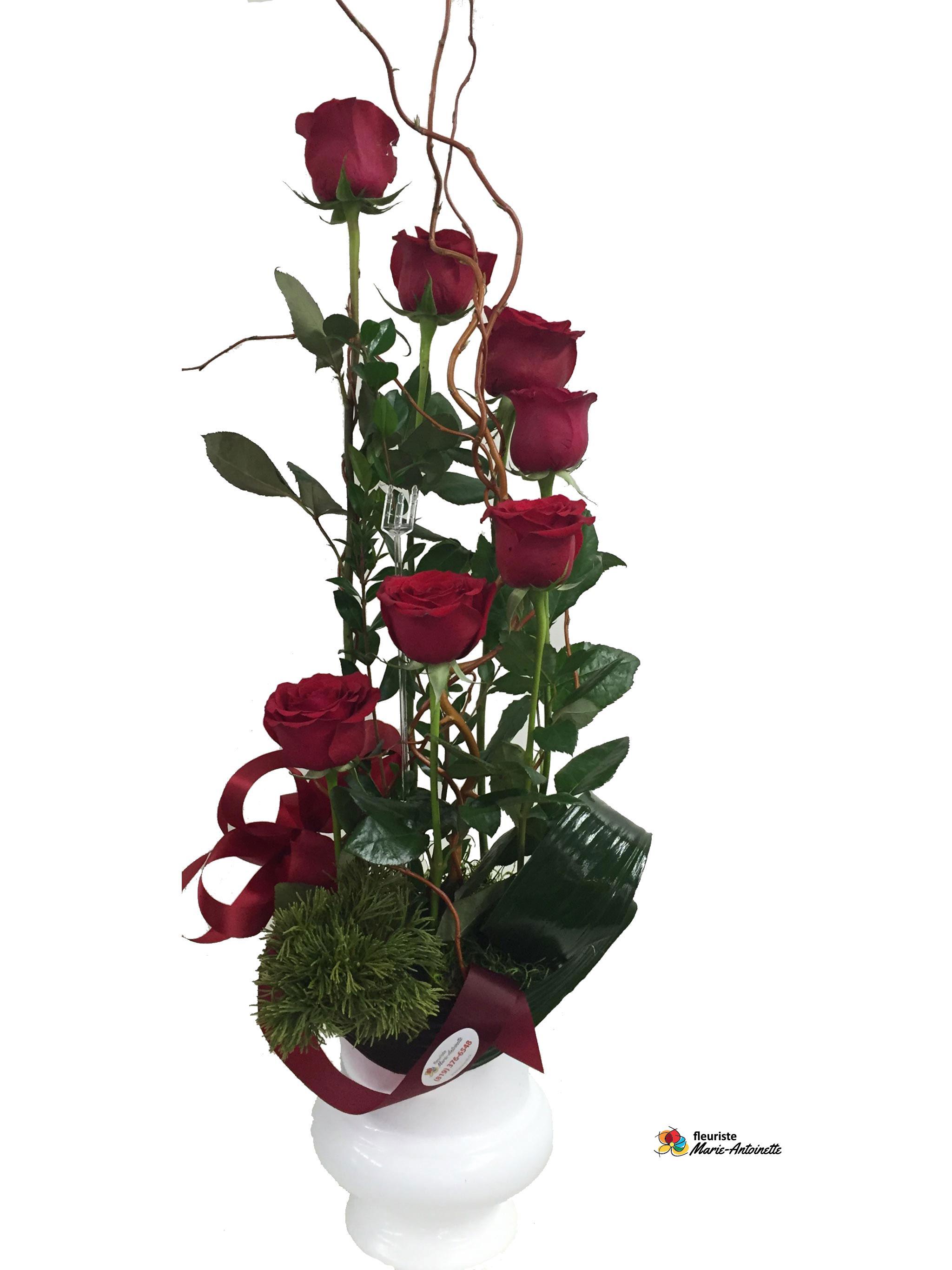 arrangement plante fleurs fleuriste marie antoinette. Black Bedroom Furniture Sets. Home Design Ideas