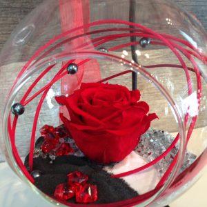 Rose éternelle rouge suspendue