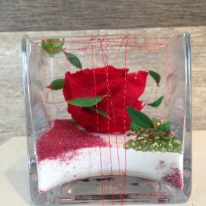 Rose éternelle rouge vase carré