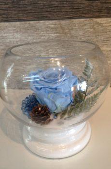 Rose éternelle bleue vase rond