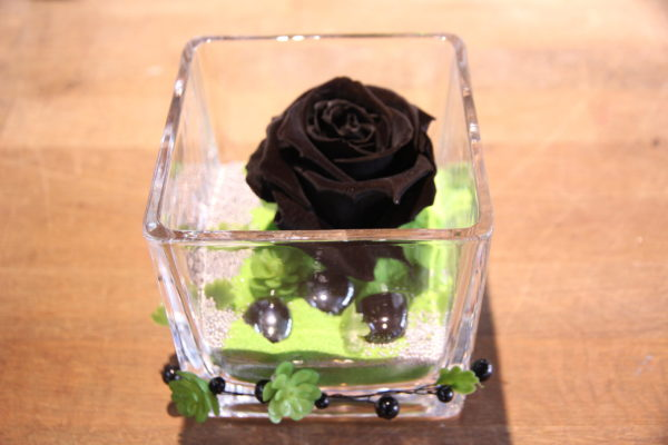 Rose éternette noir