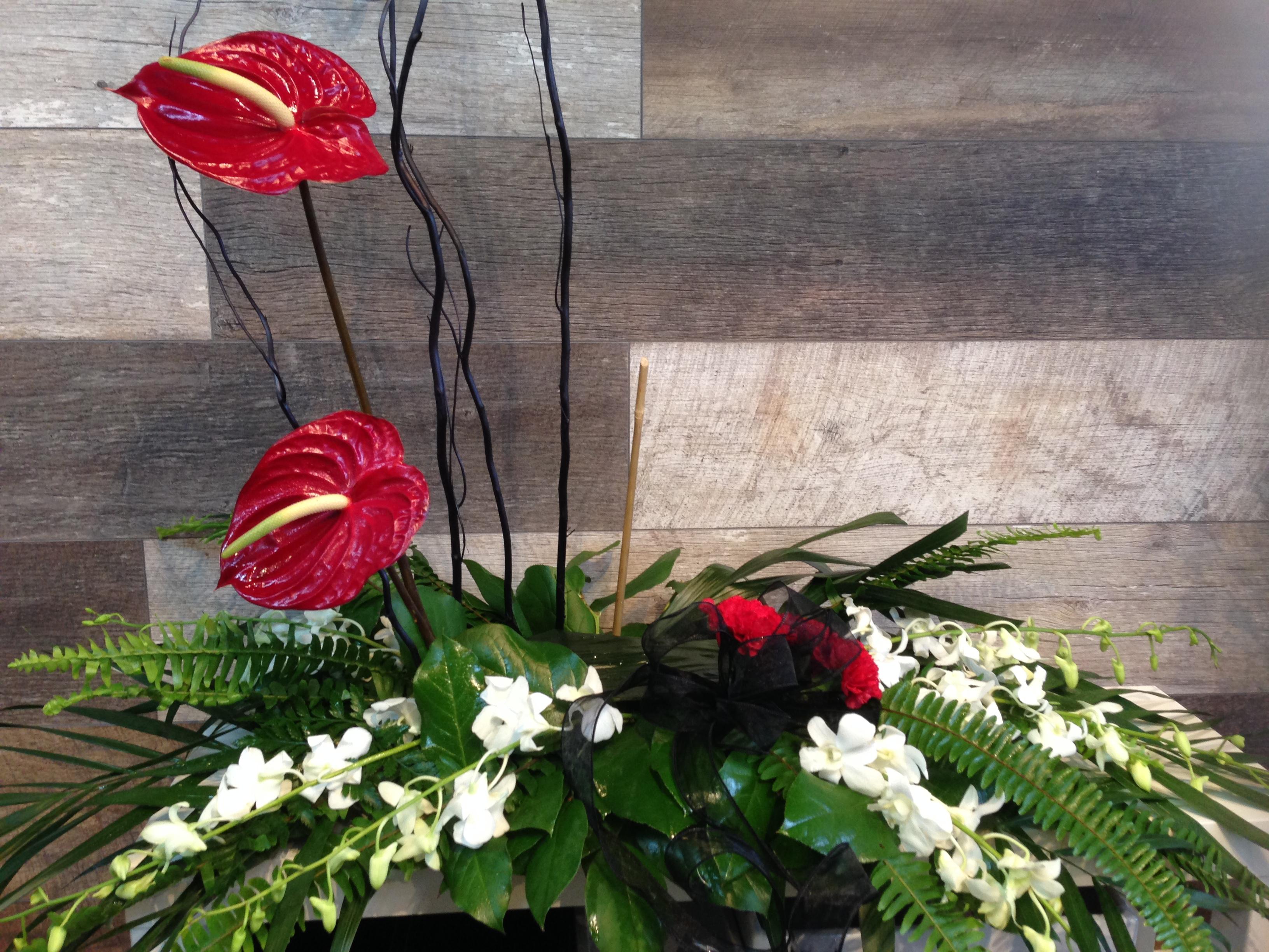coussin pour photo avec anthurium fleuriste marie antoinette. Black Bedroom Furniture Sets. Home Design Ideas