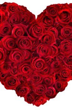 ♥ Saint-Valentin