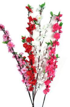 Branche de cerisier japonais rouge
