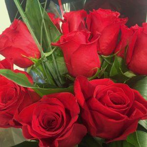12 roses « mois de la rose »