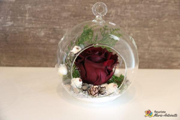 Rose éternelle rouge foncé