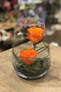 Roses éternelles oranges