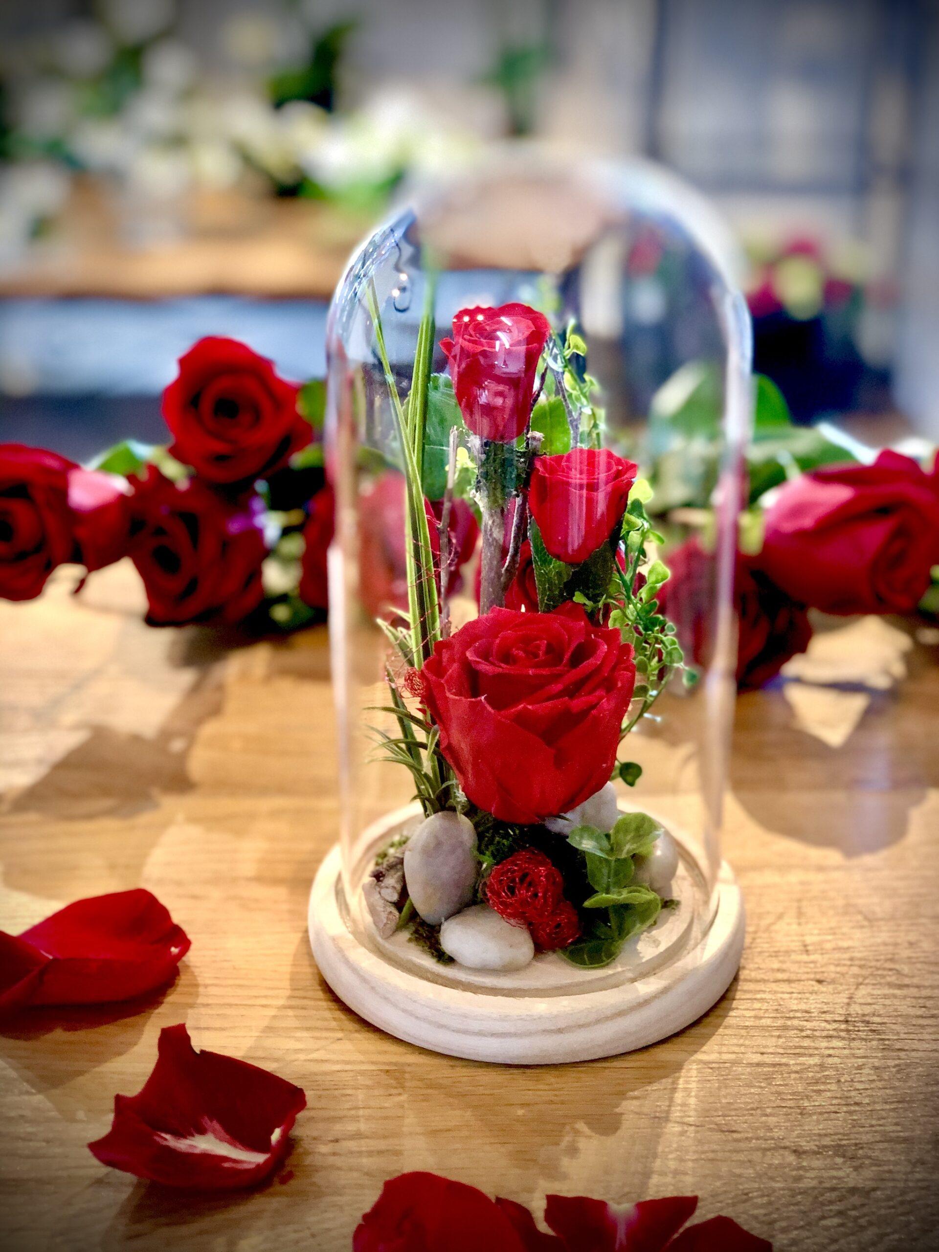 Cloche en verre avec rose éternelle