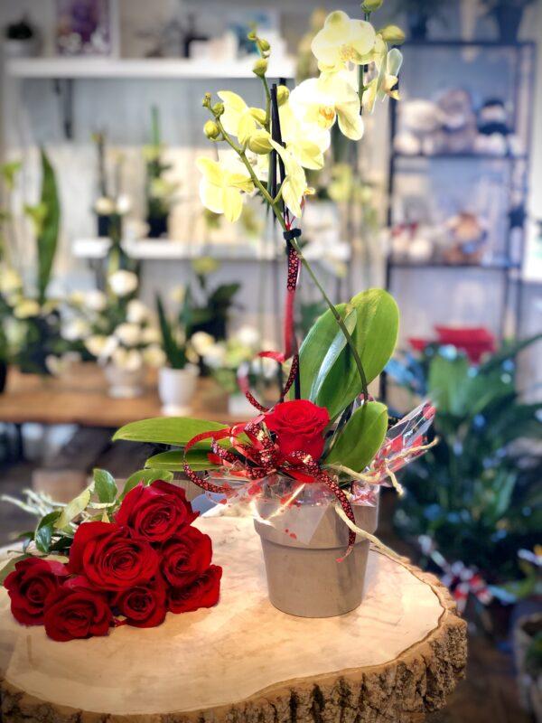 Orchidée et rose éternelle de St-Valentin