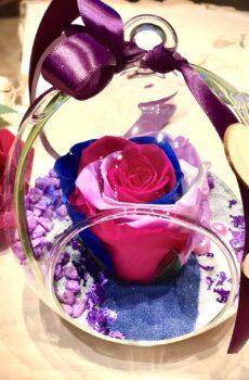 Rose éternelle 3 couleurs